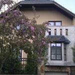 fa hatású ablakok műanyagból családi házban